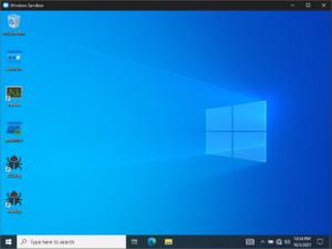 New Windows Sandbox